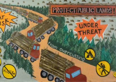 protect public lands